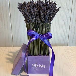 Petite Purple Square Lavender Box