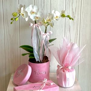 For Her Giftset