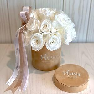 Tan & White Rose Dome