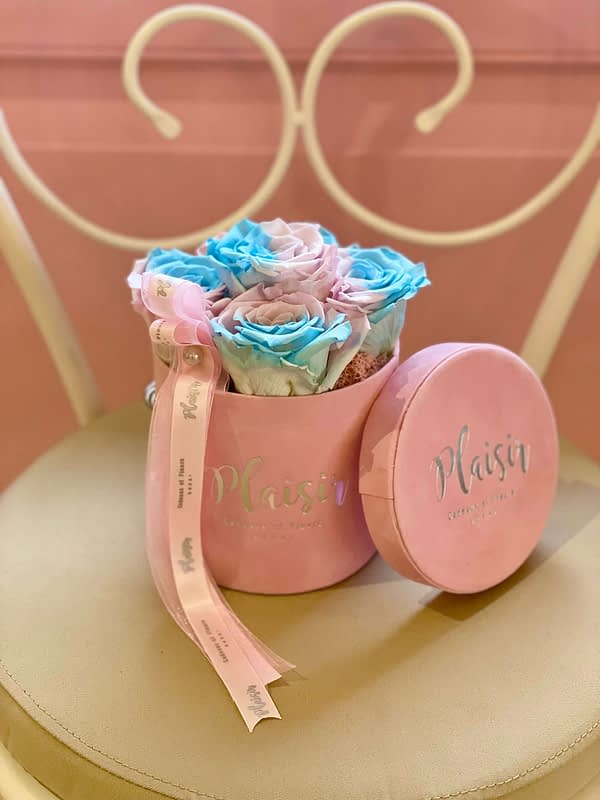 Candy-lane Infinity Roses in Pink Mini Cylinder