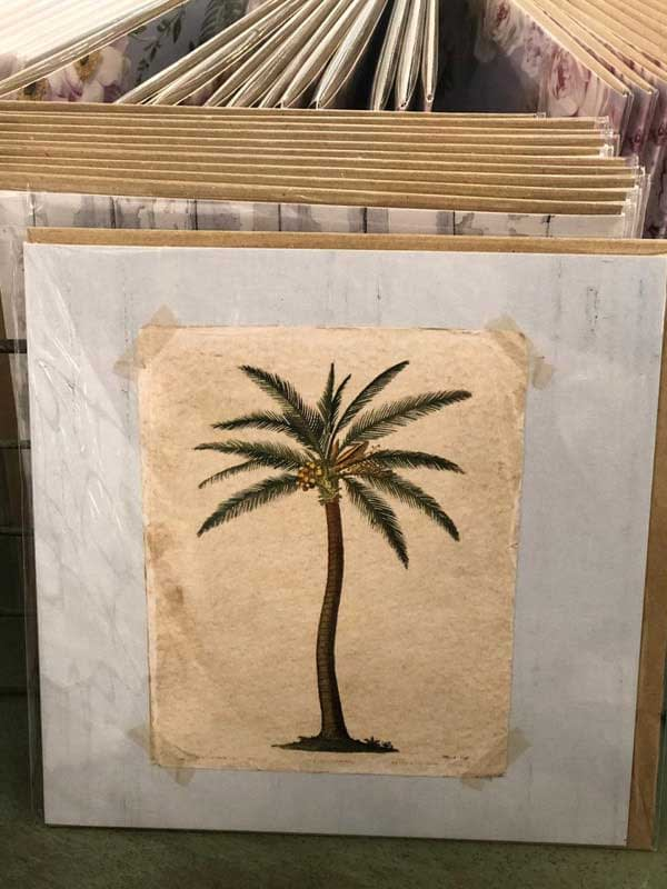 Blank – Palm