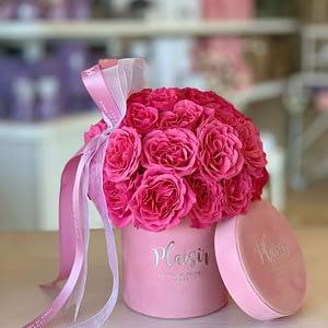 Fuschia rose dome in petite cylinder