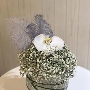 Feathery Gipso-Small