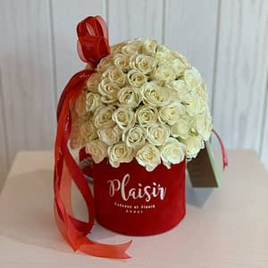 White Rose Dome in Mini Red Cylinder