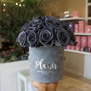 Grey Petite Infinity Grey Roses