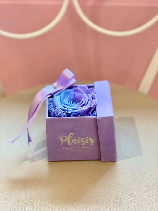 Candy-lane Single Infinity in Lilac Box