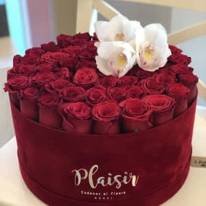 Red Hatbox flat Rose with Cymbidium Orchids